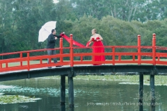 2013 Angela & Mark's wedding. Japanese Bridge in Coffs Harbour Botanic Gardens
